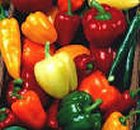 002 food image hor042963i02