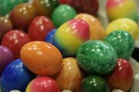 Snackbar 't Haasje verstopt 300 eieren
