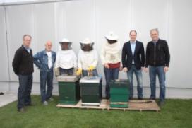 Honingproductie op dak keuken Van den Boer