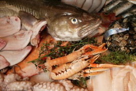 Kok pikt vis via wasmand