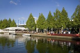 Terras Top 100 2014 nr. 72: Strandzuid, Amsterdam
