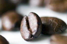Bekendmaking Koffie Top 100 2015 live via Periscope