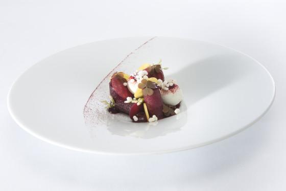 Bordeau dish 131 560x373