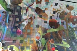 Video: sfeerimpressie Markthal Rotterdam