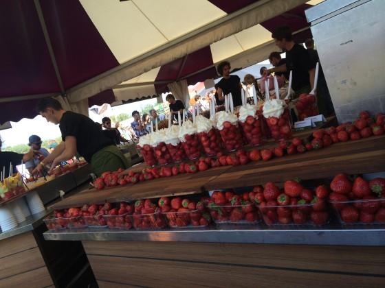 La place aardbeien 560x420