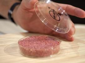 'Kweekburger binnen tien jaar in cafetaria'
