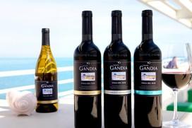 Vicente Gandia verkoopt in eerste jaar op Nederlandse markt een miljoen flessen
