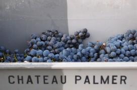 Wijn Actueel: eerste indrukken Bordeaux 2015