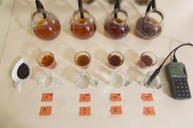 Het effect van water op de smaak van thee
