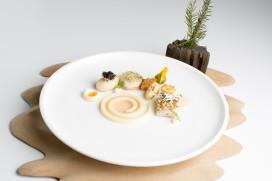 Foto's Bocuse d'Or: gerechten en sfeer