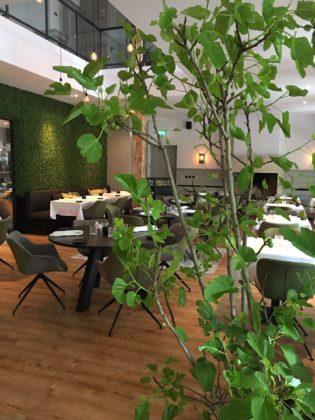 Quarz restaurant 315x420