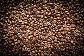 Alkmaars Coffee Event met Barista Kampioenschap