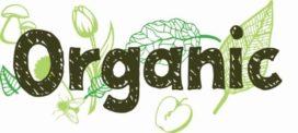 Organic pop-up restaurant met 'Schipholgans' op de kaart