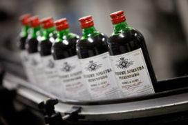 Boomsma Distilleerderij neemt Weduwe Joustra over