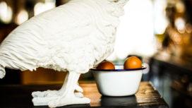 The Egg Store: Restaurant met ei in de hoofdrol