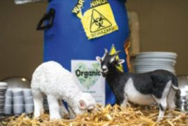 100 procent Organic: Schipholgans en bio-cola