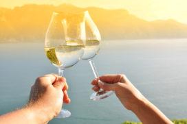Uitstekende wijnkaart GaultMillau 2017