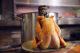 Bier en spijs: Cornet met scharrelkip