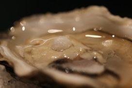 Koks van restaurant Monarh vinden parel in oester