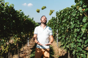 Wat zijn dé 14 wijntrends volgens wijnprofessionals?