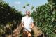 Guy houben raar wijnen jongleren in wijngaard 28 80x53