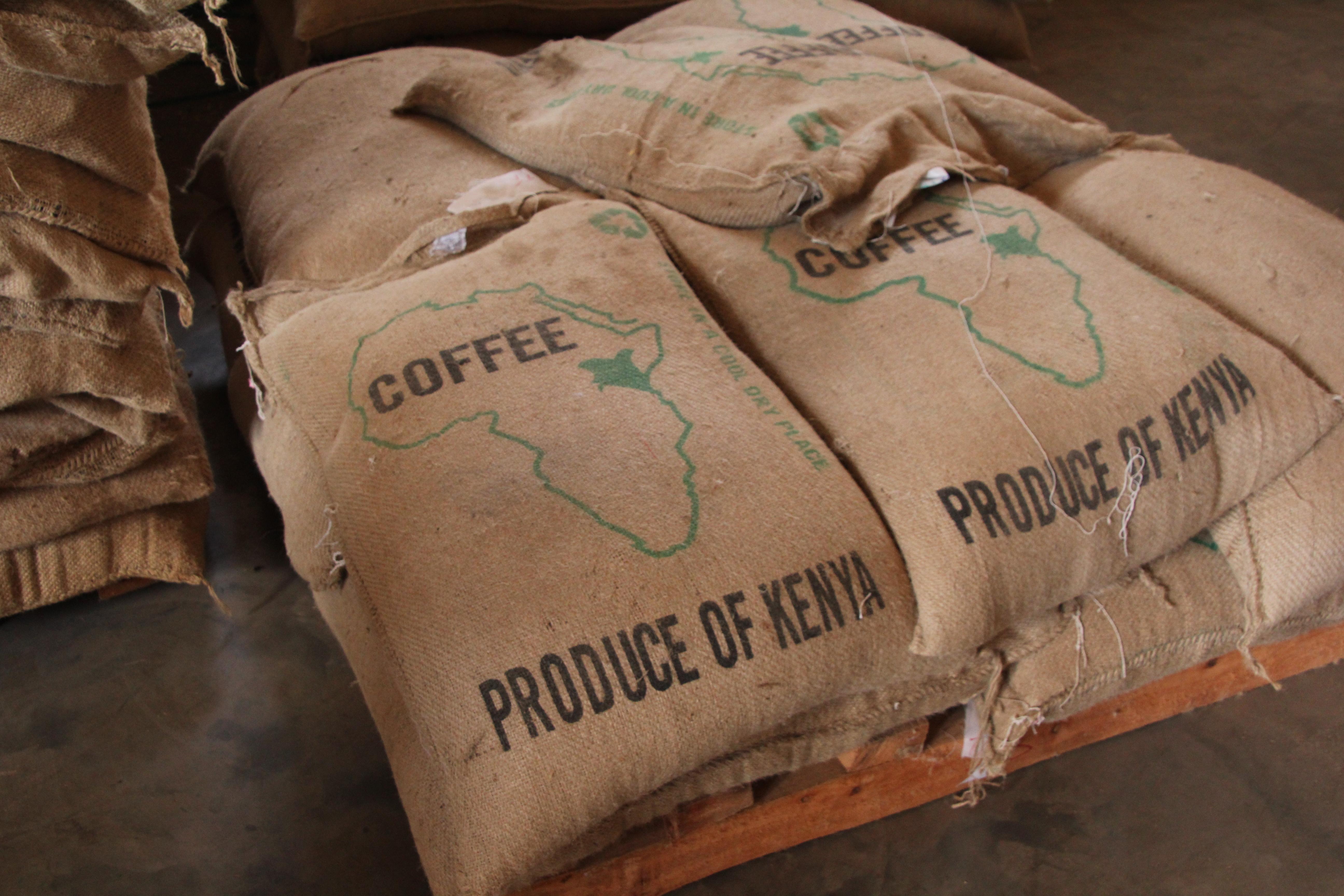 De totale jaarproductie van Kenia is 800.000 zakken van 60 kilo