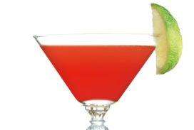 Cocktailrecept: Watermelon Margarita