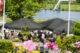 Veerhuisravenstein top100 180617 4 80x53