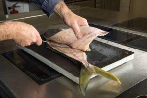 In Zeeland gekweekte Yellowtail vis nu al klaar voor gebruik